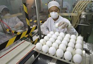 China swine flu vaccine program