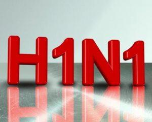 H1N1 news flu mutation in United States