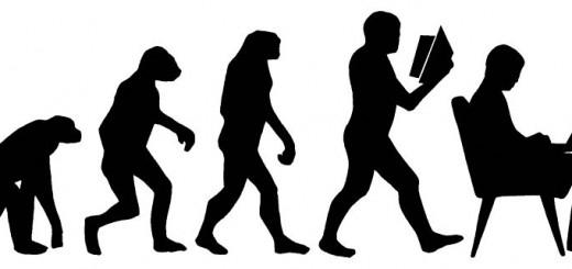 Evolution - Photo by Johanna Pung
