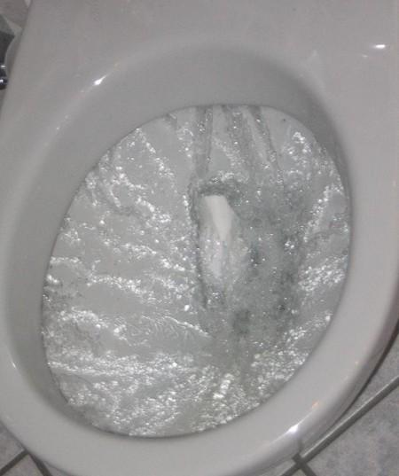 Flushing Toilet - Photo by Jarlhelm