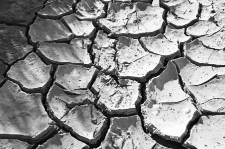 Drought - Photo by Bert Kaufmann