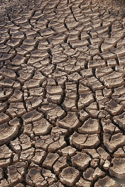 Drought - Photo by Tomas Castelazo