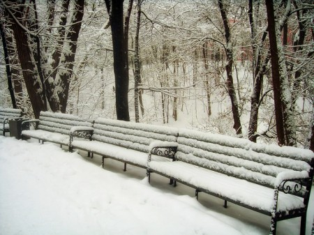 Park Benches In Winter - Public Domain