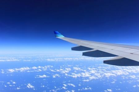 Plane Wing - Public Domain