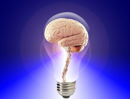 Human Brain In A Lightbulb - Public Domain
