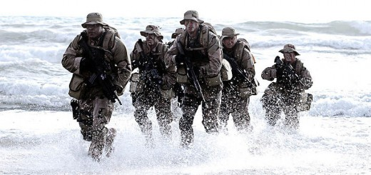 Seal Team Coming Out Of The Water - Public Domain