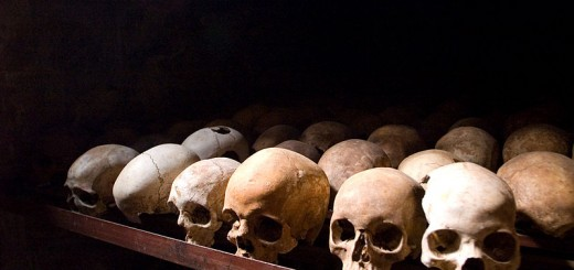 Skulls - Photo by Fanny Schertzer