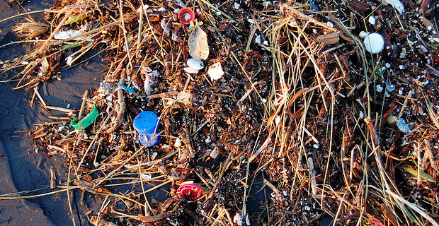 Ocean Plastic - Photo by Kevin Krejci on Flickr