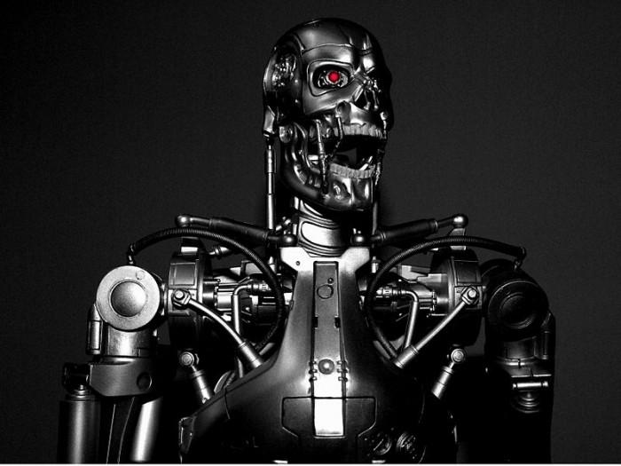 Terminator - Photo by Stephen Bowler