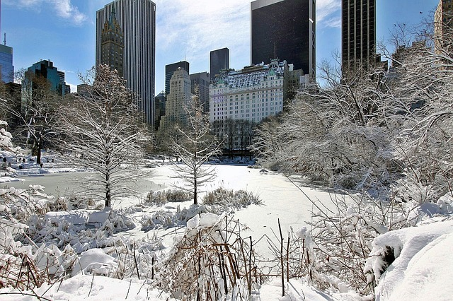 New York City Central Park Snow - Public Domain