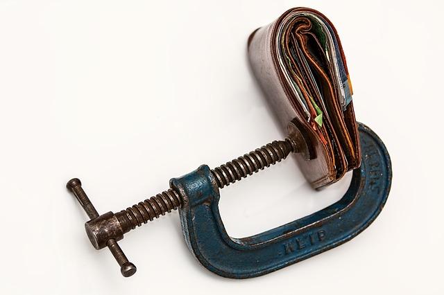 Squeeze Wallet - Public Domain