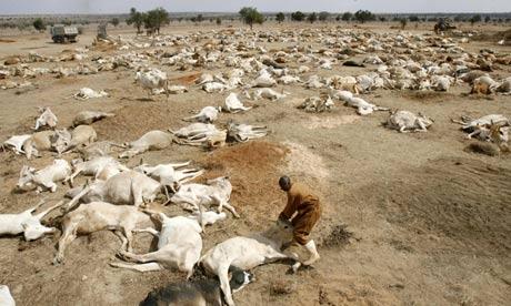 famine Kenya