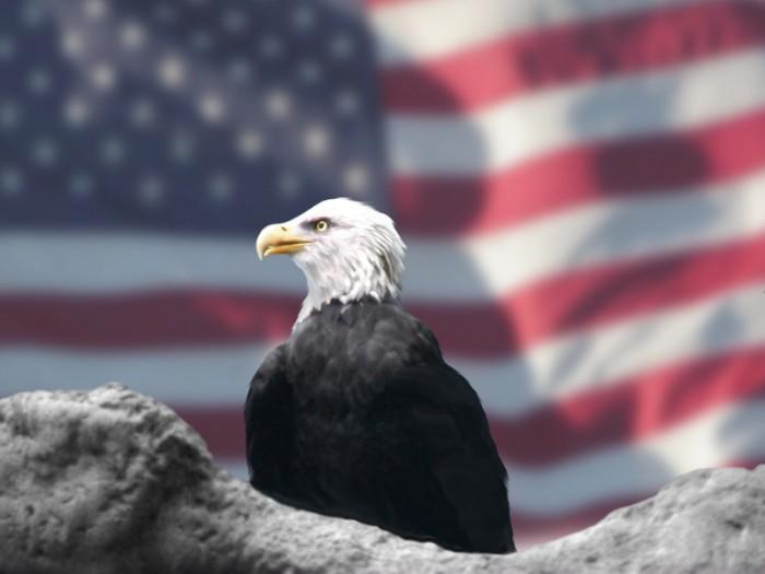 America - Photo by Bubbles