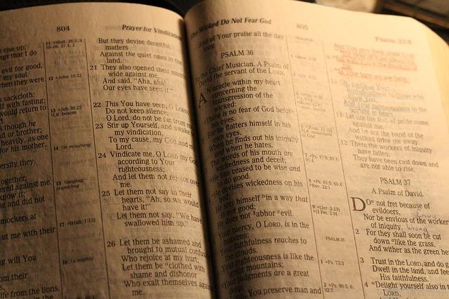 Bible - Public Domain