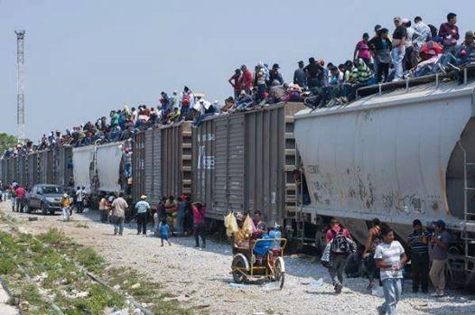 Illegal Immigration - Crossing The Rio Grande