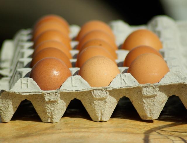 Eggs - Public Domain