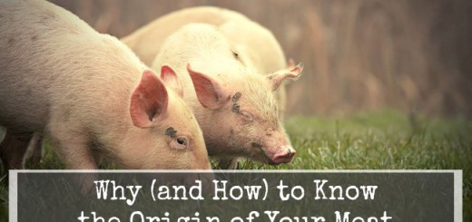Why-and-How-to-Know-the-Origin-of-Your-Meat