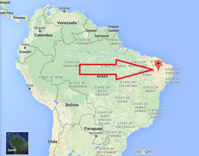 Zika Virus 1