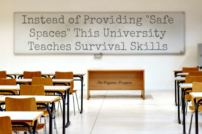 This-University-Teaches-Survival-Skills