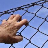 Barbed Wire - Public Domain