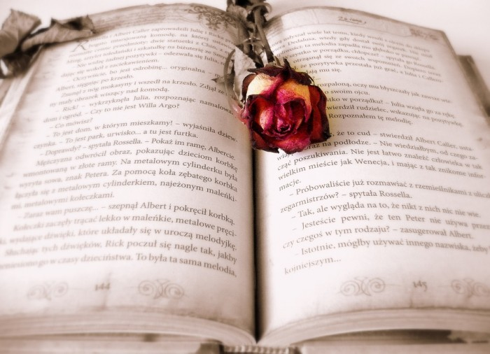 Romance Novel - Public Domain