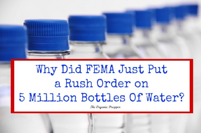 FEMA Water - Daisy Luther