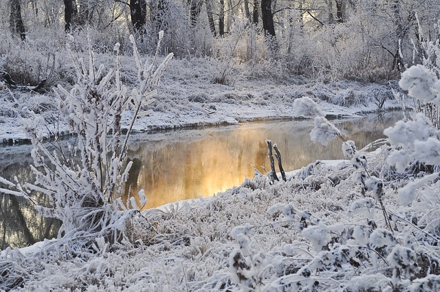 winter-public-domain