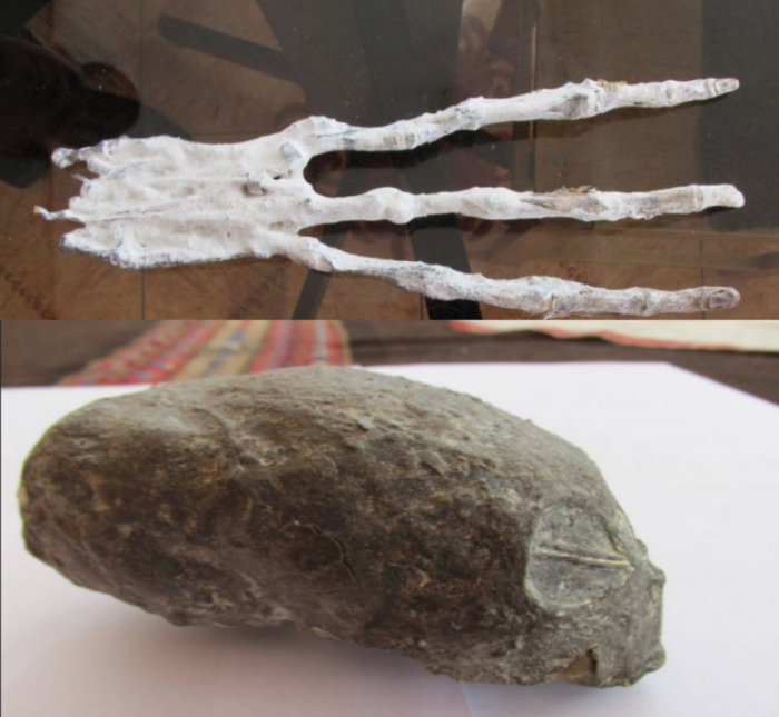 alien-head-and-hand-found-in-peru