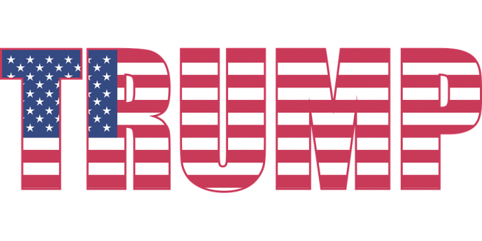 Trump Flag - Public Domain